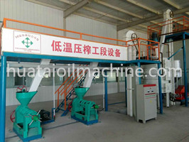 cold press walnut oil extraction machine