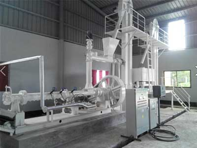 Rice Bran Extrusion Section